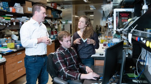 Gladstone Researchers Used a Machine-Learning Approach to Discover New Ways of Controlling the Spatial Organization of Induced Pluripotent Stem Cells