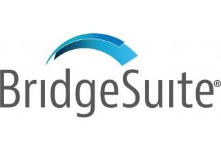 BridgeSuite™