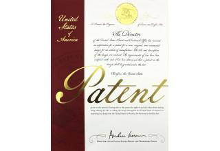 Metal Defender XLD-H1 Patent