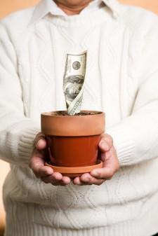 Man holding plant pot growing money