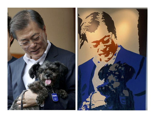 World Dog Alliance Celebrates Review of the Dog Meat Ban in South Korea