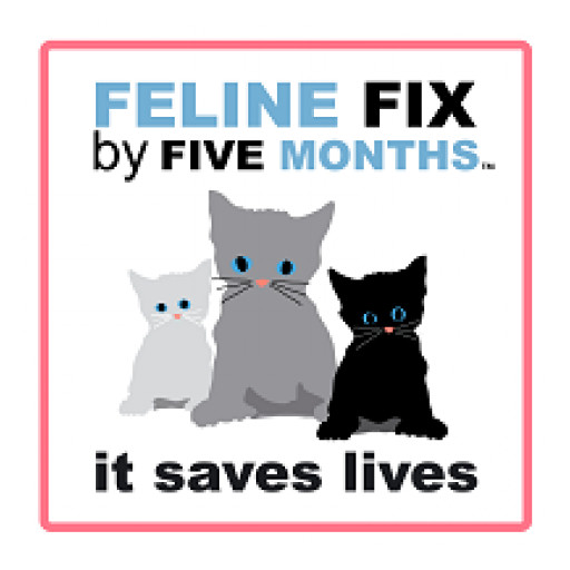 Survey Uncovers Reasons for Non-Adoption of Current Feline Spay/Neuter Recommendations