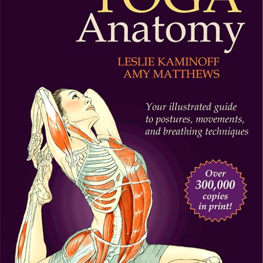 Yoga Teachers Will Get an Opportunity to Study With Leslie Kaminoff Author of Yoga Anatomy| Encinitas
