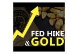 Fed & Gold
