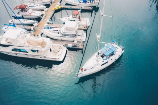 Fun Cat Sailing Promises True San Diego Sightseeing
