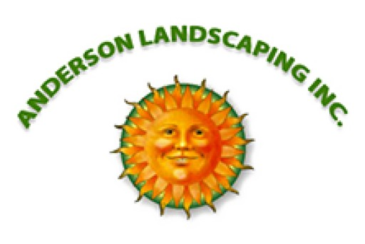 Professional Landscape Installation Miami Turns Properties Into Beauty
