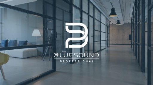 Bluesound Professional Appoints Manufacturer's Representatives in North America
