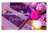 Benefits of Ordering Plants Online