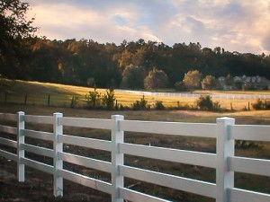Vinyl Fencing Is Less Expensive Than Wood Or Iron Fences