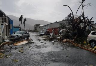 Caribbean Damage