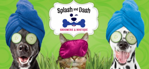 Splash and Dash Groomerie & Boutique Ranked a Top New Franchise by Entrepreneur Magazine