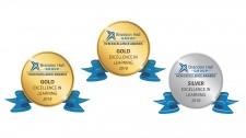 Brandon Hall HCM Excellence Awards