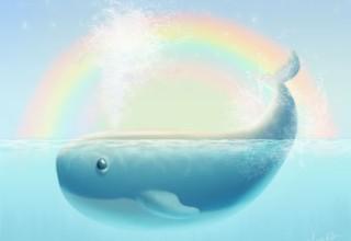 A Whale of Fun