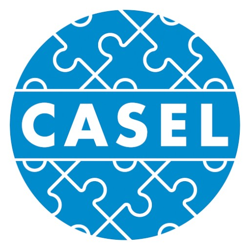 LSI Partners With CASEL