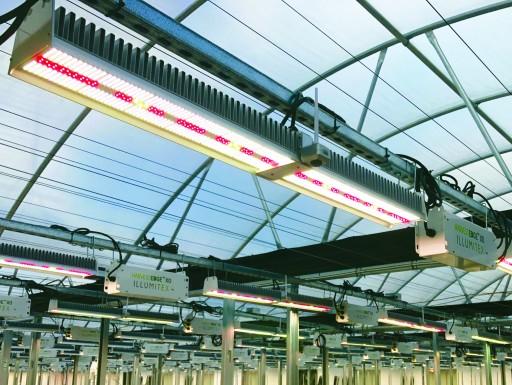 Illumitex Expands FarmVisionAI™ Platform to Support Widest Range of CEA Grow Facilities