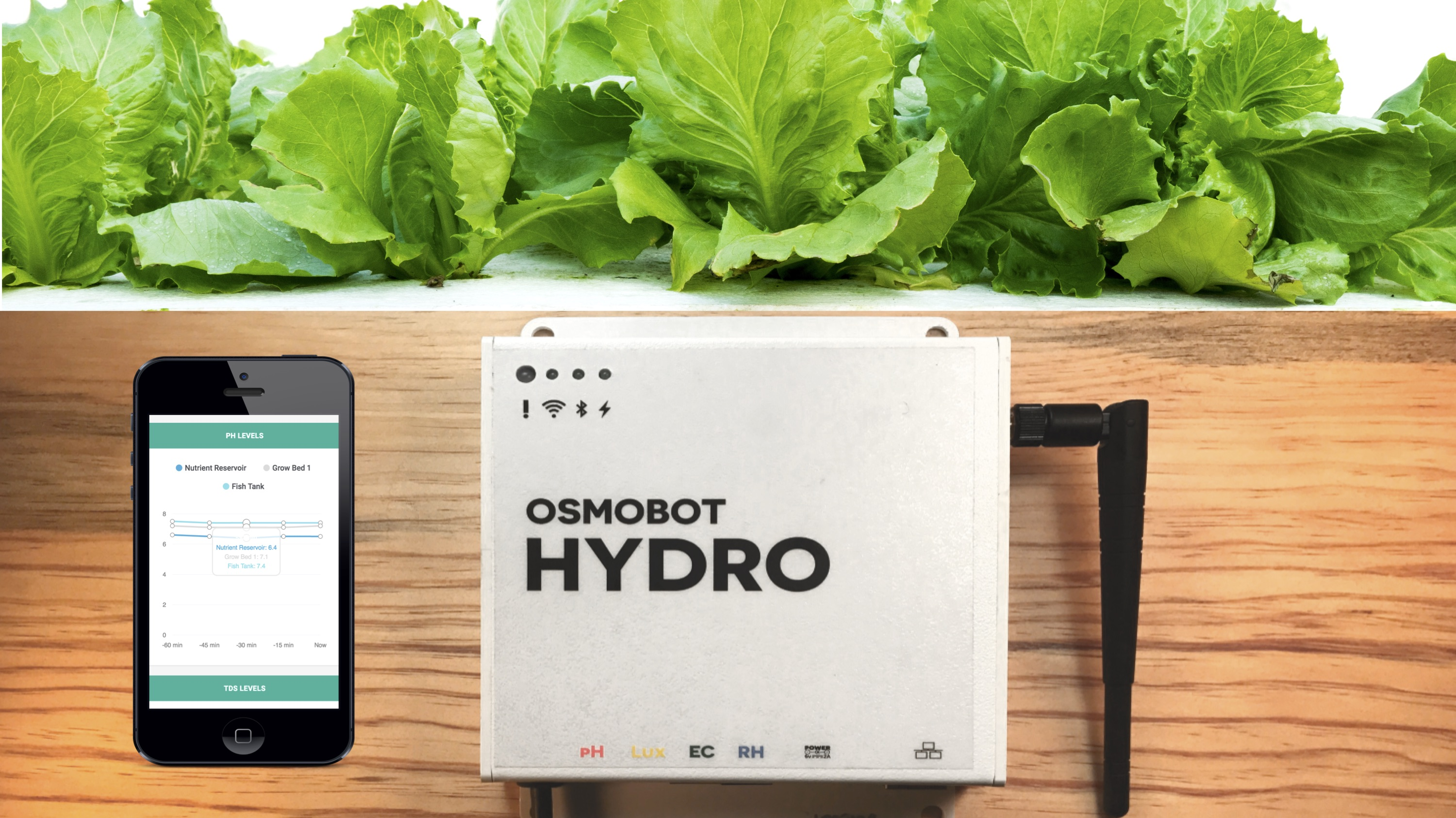Product Launch: Low-Cost Online Monitor for Hydroponics and