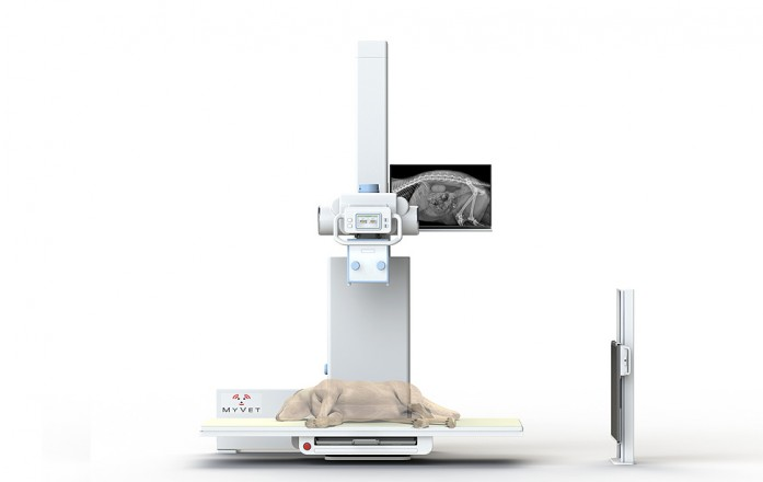 MyVet Imaging Table Lowered Position
