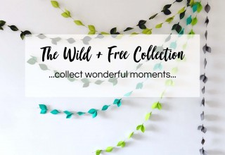 The Wild & Free Collection