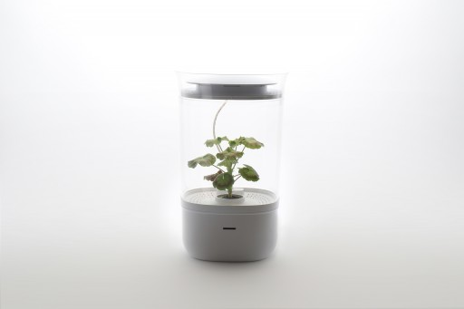 Smart Indoor Gardening System Coming to Kickstarter