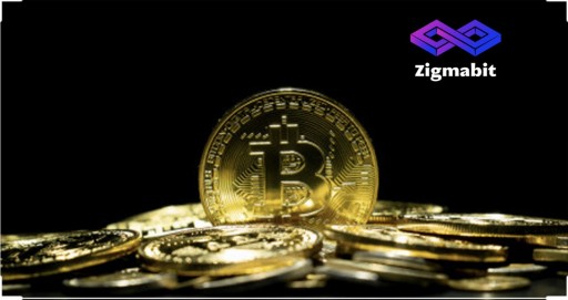 Zigmabit Emerges as the Top Cryptocurrency Mining Hardware Manufacturer