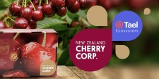 New Zealand Cherry Corp. partners with Techrock