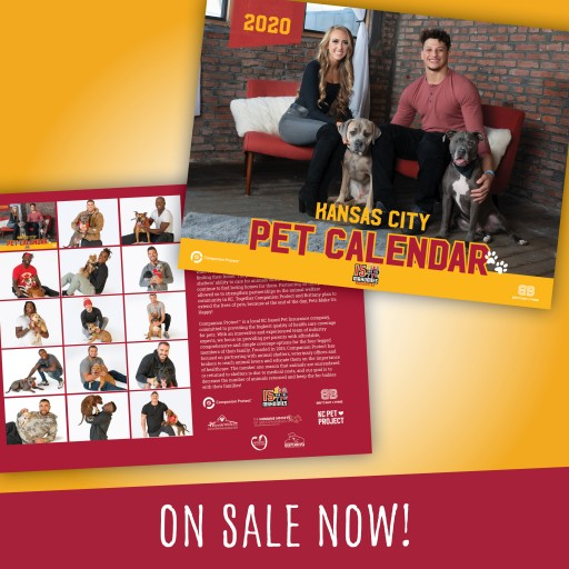 Companion Protect and Brittany Matthews Launch 2020 KC Pet Calendar Benefiting Local Shelters and 15 and the Mahomies Foundation