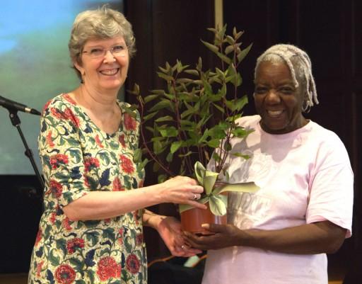 Growing Nashville: Church of Scientology Celebrates World Environment Day