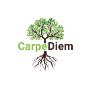 Carpe Diem Marketing