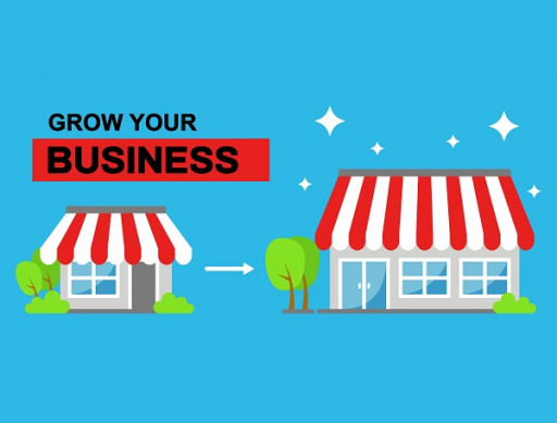 Business Growth Strategies for Successful Small Businesses
