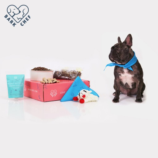 Never Run Out of Dog Food Again With BarkChef Subscription Dog Food!