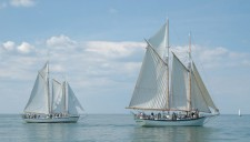Appledore IV & Appledore V Tall Ships