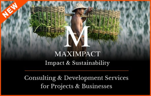Capacity Building for Projects and Businesses:  Do You Have What You Need to Succeed?