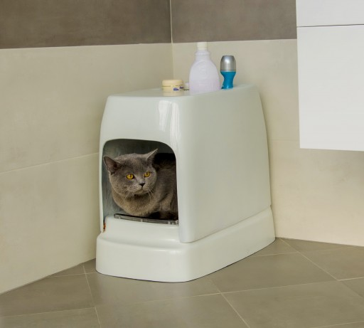 It Doesn't Require Any Refilling: CATOLET - the Unique Automatic Litter Box for Cats and Small Dogs.