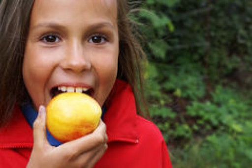 Merced County Food Bank and Community Partners Launch (PEACH) Program.