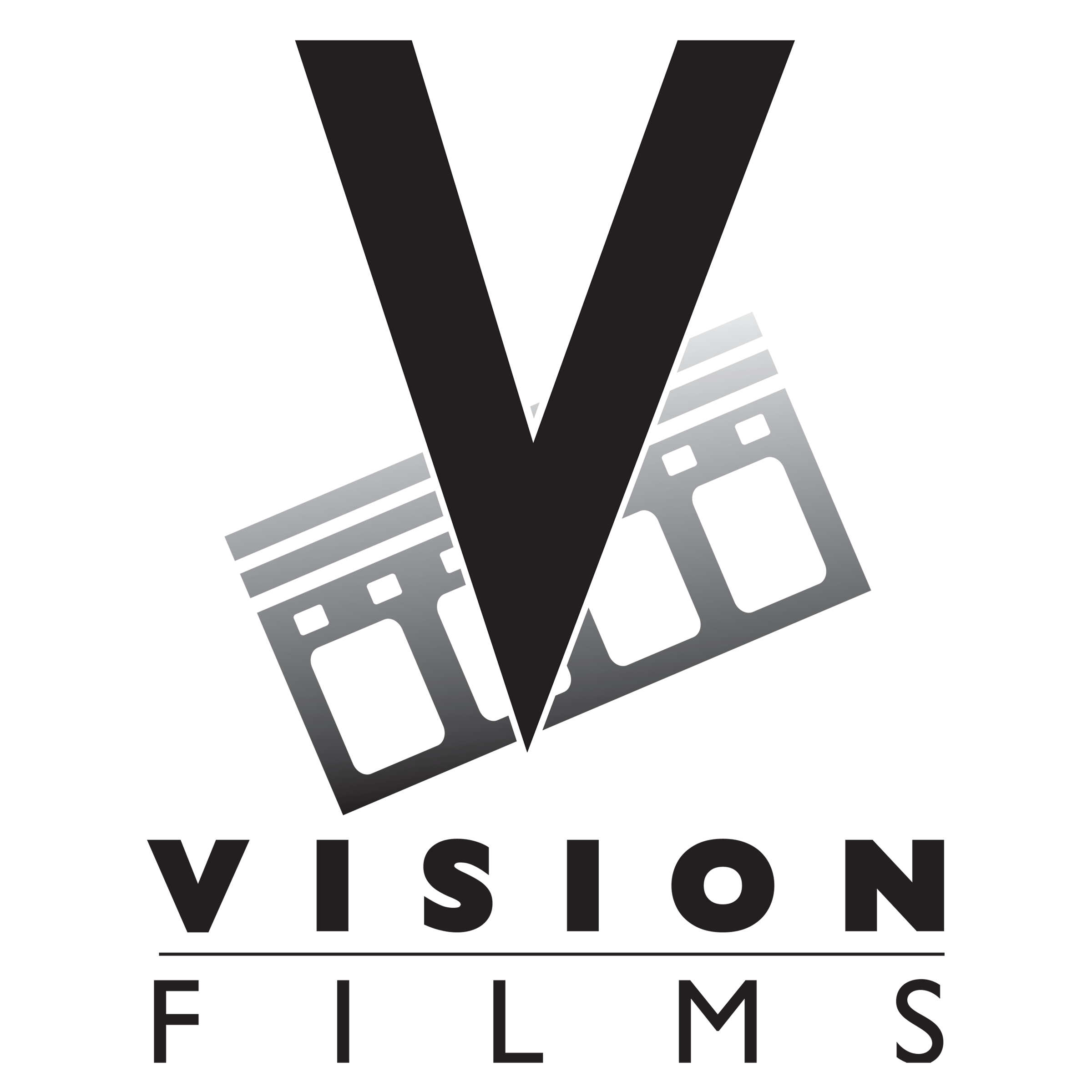 Vision Films Presents Toys Pets Popular Chinese Animated Feature Set For North American Release Newswire