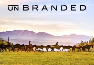 Unbranded has claimed top audience awards