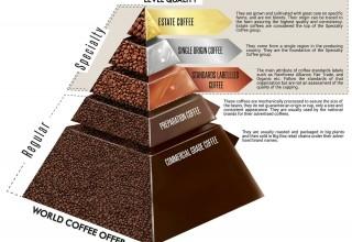 Quality of Coffee Pyramid