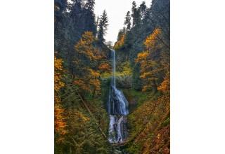 Pup Creek Falls in Oregon's Mt. Hood Territory
