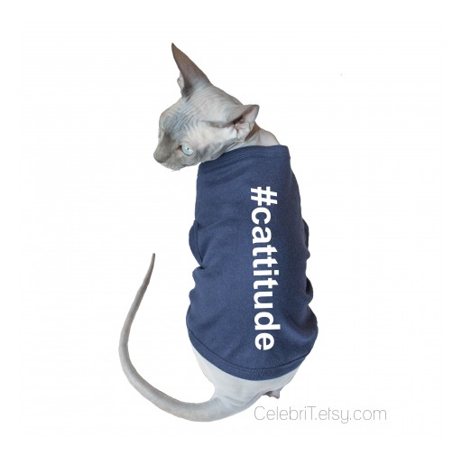 Casual CelebriT Announces New Clothing Line for Sphynx & Other Hairless Cats