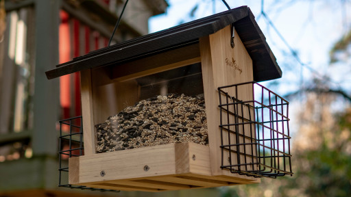 Invite Birds to the Yard With This DIY Bird Feeder From Exmark