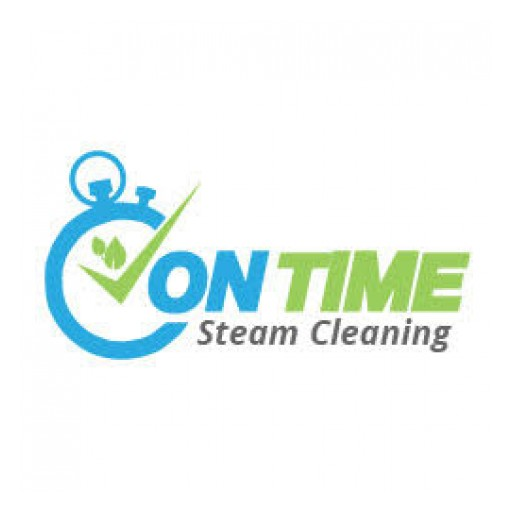 On Time Steam Cleaning, Inc. Offers Donation for Sofa or Upholstery Cleaning for Gala Auction for Chelsea's Local Elementary School