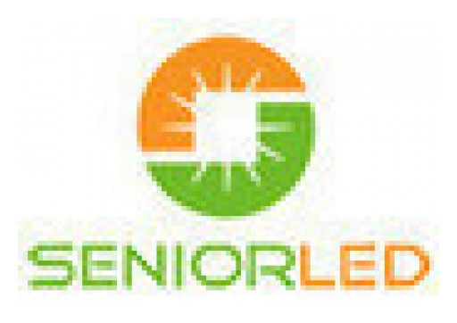 Fuel Your Business With LED Solutions From Senior LED