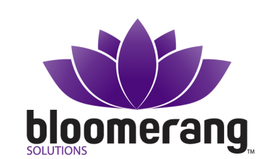 Bloomerang Solutions