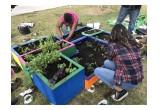Students Planting School Garden