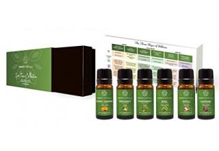 Aromatherapy Essential Oil Gift Set
