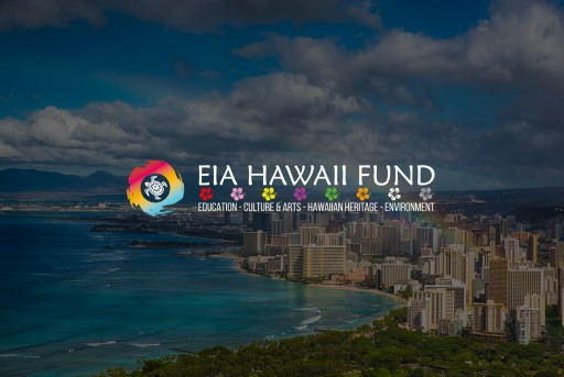 New Hawaii Based Focused Initiative Launches to Connect Non-Profit Organizations With Essential Resources