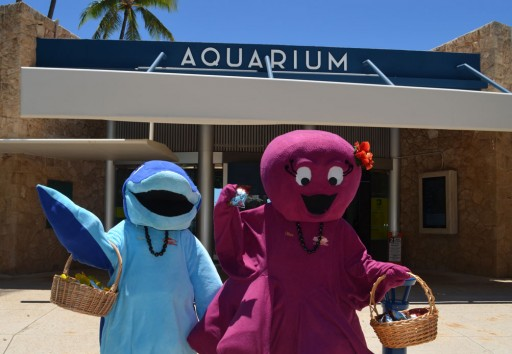 Diamond Bakery & Waikiki Aquarium Offer Snack Attack Zone for Pokemon Users