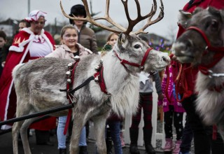 Santa's reindeer brought joy to the children