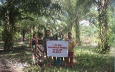 Indigenous women palm oil farmers from Sarawak, Malaysia