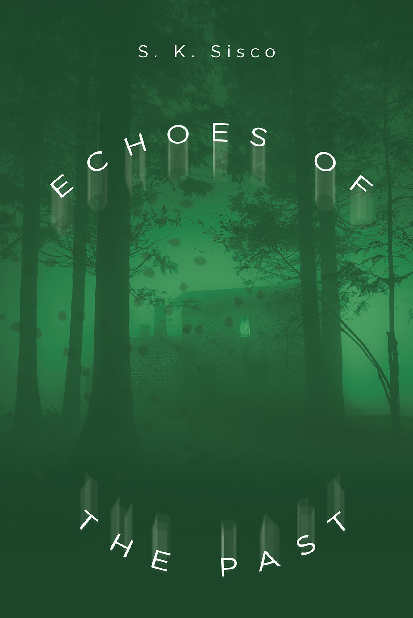 Author S K  Sisco's New Book 'Echoes of the Past' is the